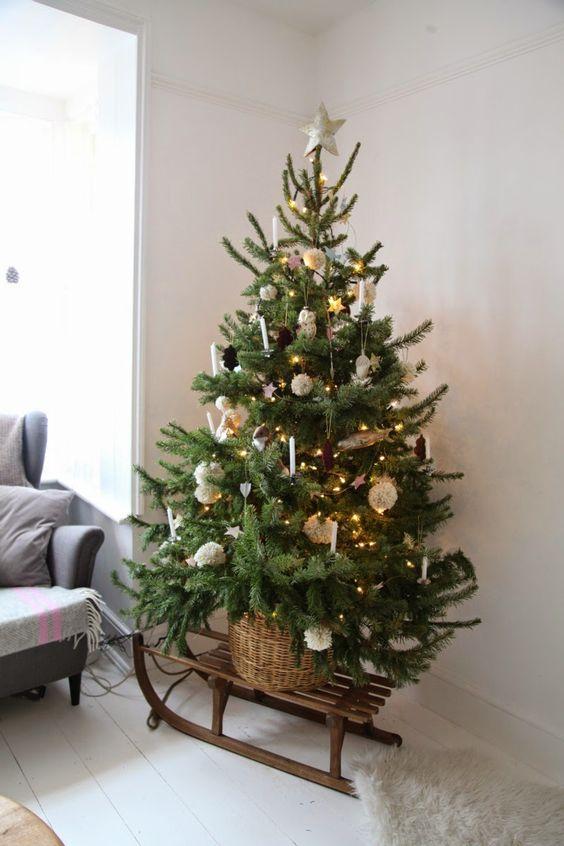 Magical Christmas Trees